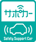 Safety Support Car